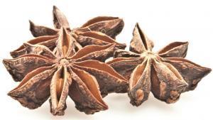 Illicium verum Star anise Sternanis