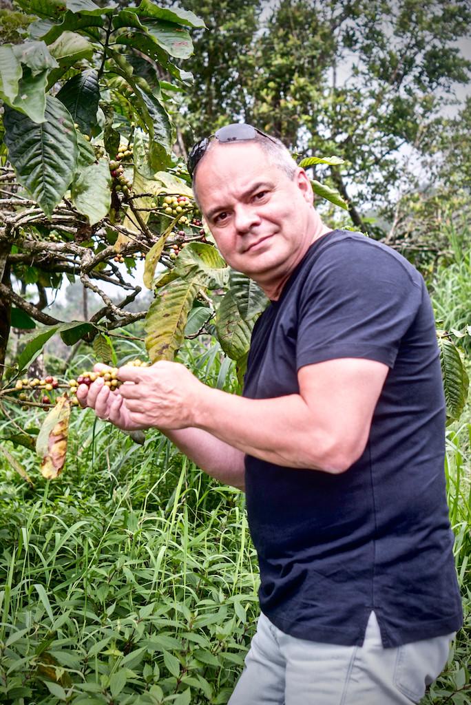 Uwe-Jens Karl, coffee trees amongst clove forest