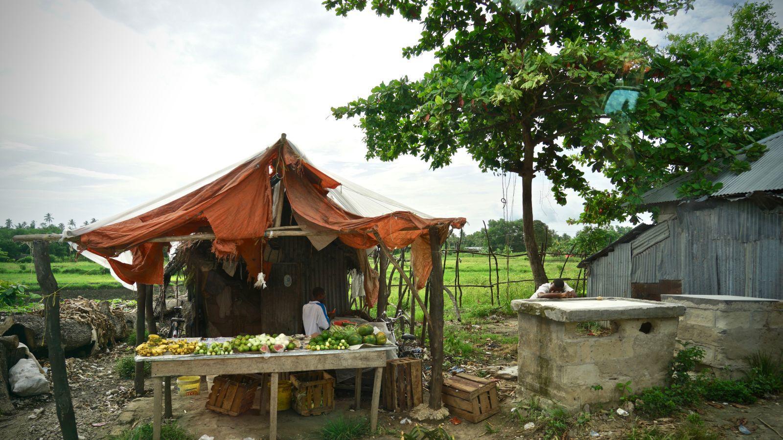 Obst- und Gemüsestand am Straßenrand irgendwo zwischen Sansibar Town und Kiwengwa