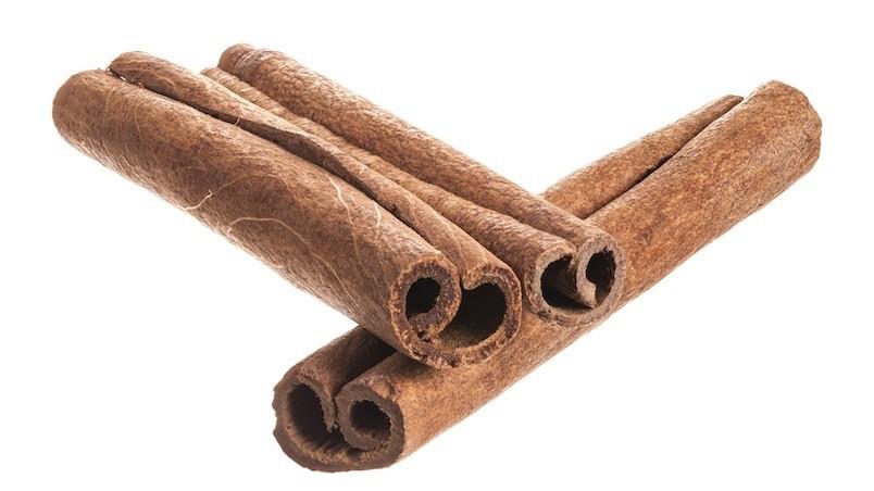 Cinnamomum cassia Chinese cinnamon Zimtkassie
