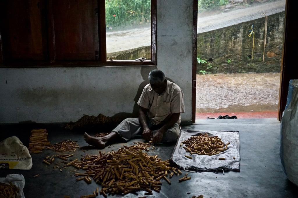 Sri Lanka Echter Ceylon Zimt