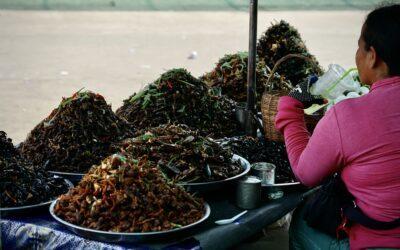 Kambodscha: Der Spider Market von Skun