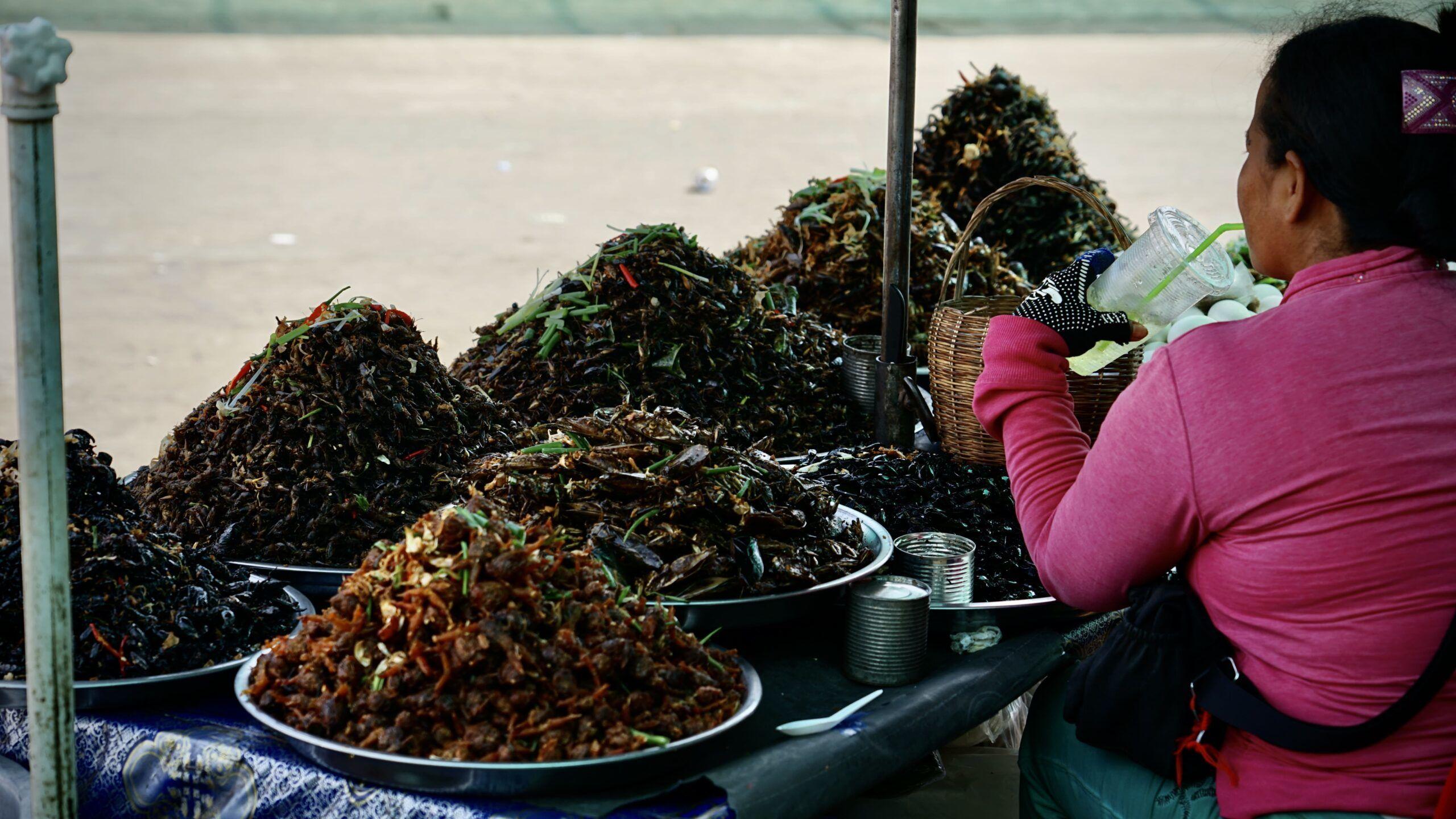Skorpione, Spinnen und Insekten auf Skun Spider Market, Kambodscha