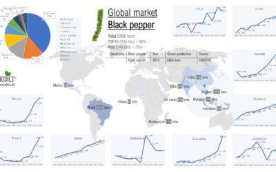 Global Market Black Pepper – Infographic (en_EN)